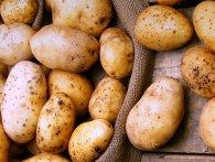 Ковельчанина засудили за крадіжку 3 кг картоплі