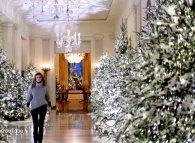 Білий дім поринув у різдвяну казку та 160 кілограмів імбирного печива (відео)