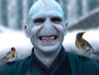 Фанатам презентували новий фільм про Волдеморта (відео)