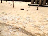 На Одещині випав жовтий сніг (фото)