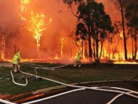 Масштабна пожежа досягла Сіднея (відео)