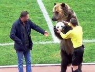 Трюки російського ведмедя-уболівальника обурили захисників тварин (відео)