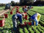 Щоб забрати тіло заробітчанки з Сумщини, родина має віддати 102 тисячі гривень