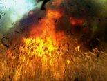 Недопалок чи випалювання стерні можуть стати причиною смертельно небезпечної пожежі