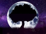 Місячний календар на 15 серпня - час для відпочинку