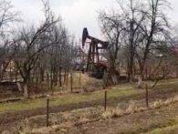 Житель Львівщини встановив на власному городі свердловину і качає нафту (відео)