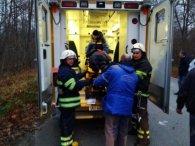 Під Чорнобилем серйозна аварія із перевертанням через сохатого (фото)