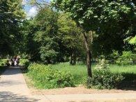 У Луцьку набирає обертів скандал навколо встановлення дитячого майданчика у парку