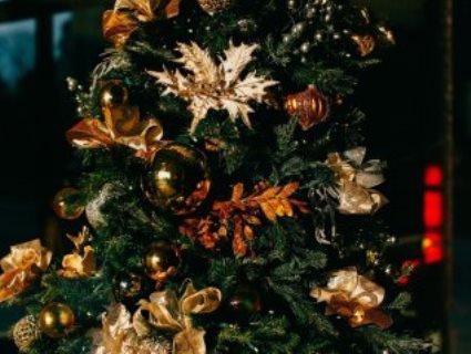 31 грудня: в якій області випаде сніг на Новий рік