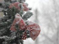 2019-ий: в Україні новий рік розпочався невеликим снігом