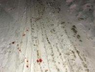 Підліток звіряче побив меншу сестру: лупив пательнею по голові і викинув надвір у білизні (фото)