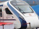 Найшвидший поїзд Індії збив корову