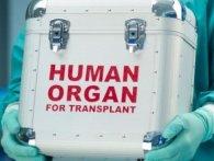 Шанс на порятунок: в Україні дозволили трансплантацію