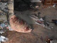 На Рівненщині мати знайшла убитим сина (фото)