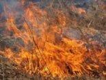 На Волині виникло 43 пожежі через необережність і паління сухої трави
