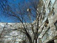 У Миколаєві з п'ятого поверху викинули крісло на голови перехожим  (фото)