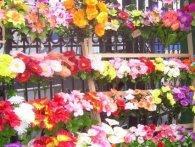 Лучан закликають не купувати штучних квітів на кладовища (відео)