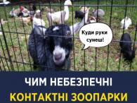 Тварини в зоопарках розносять смертельні хвороби -  Супрун