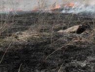 На місці спалювання сухостою на Рівненщині знайшли тіло чоловіка