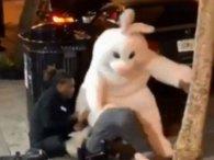Не такий уже білий і пухнастий: пасхальний зайчик засвітився у вуличній бійці (відео)
