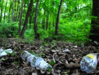 Лісовий санітар: на Рівненщині хлопець очистив ліс від 7 тонн сміття