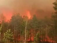 На Рівненщині через паліїв трави горить другий за площею заповідник у країні (відео)