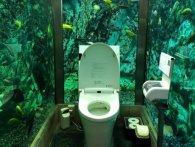 Відвідувачі приходять у японське кафе заради... туалету за $250 тисяч