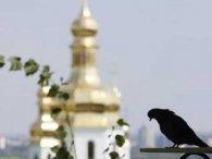 «Це наша земля!»: московські священики не пустили паломників до Почаївської Лаври (відео)