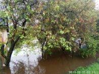 Більше метра води: на Рівненщині затопило 5 районів (фото)