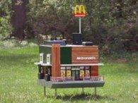 З'явився перший McDonald's для бджіл (фото, відео)