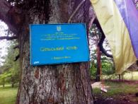 «Креатив від безвиході»: на Волині зламки меблів під дубом заміняють у селі клуб (фото)