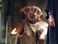 У США камера засікла «хатнього ельфа Добі» з «Гаррі Поттера» (відео)