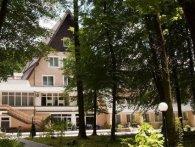 На Львівщині на людей впало дерево – п'ятьох госпіталізували