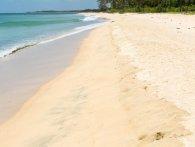 «Пожирають плоть»: небезпечні бактерії окупують пляжі