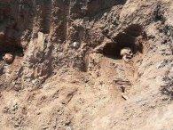 На Тернопільщині  на смітник викинули 14 могил Січових Стрільців
