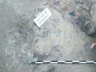 На Львівщині розкопали фрагменти першого християнського храму ХІІ століття (фото)