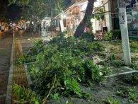 Смертоносний ураган у Греції убив шістьох туристів (відео)