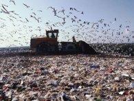 Україна – у десятці країн з кількості сміття на людину