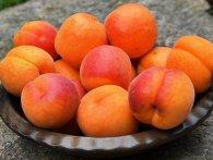 Смачно і корисно: чому варто їсти абрикоси