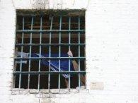 На Вінниччині у СІЗО вбили підозрюваного у зґвалтуванні