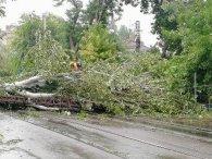 В Україні через негоду знеструмлено 129 населених пунктів: де найбільше проблем з електропостачання