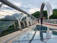 У скляному мості Кличка у Києві… завелися мухи (відео)