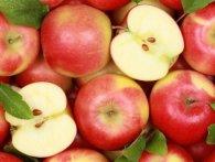 З вересня ЄС не приймає українських яблук та груш