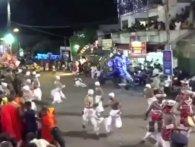 На Шрі-Ланці на релігійному фестивалі ряджені слони розтоптали 18 людей (відео)