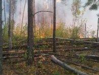 В Чорнобильській зоні третій день не можуть загасити пожежу