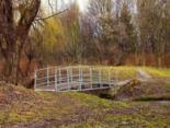 «Непутьова»: лучанка лишила дітей у парку проти ночі